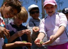 Kids touching periphyton