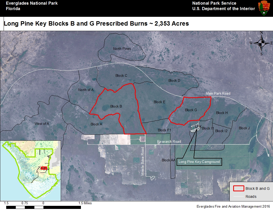 Prescribed burn area Blocks B & G of Long Pine Key Campground