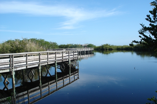 anhinga boardwalk
