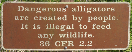 Please don't feed the wildlife sign