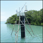 Duck Creek hydrologic monitoring station in Florida Bay