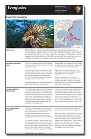 Everglades Lionfish Site Bulletin