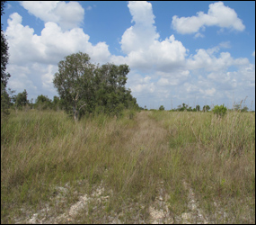 East Everglades Expansion Area boundary