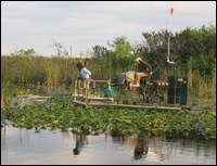 Electrofishing along the Tamiami Trail