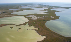 Basins in Florida Bay