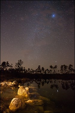Starry skies over the Pinelands