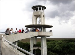 Shark Valley Observation Tower