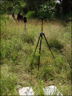 Cane Patch acoustical monitoring site