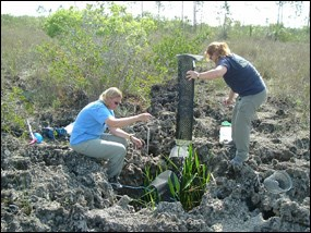 Biologists sampling for biota in a solution hole