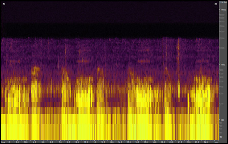Spectrogram of alligator and pig frog
