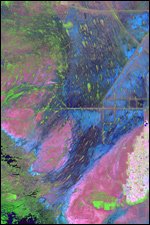 Everglades Satellite Image