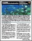 Dry Tortugas RNA Fact Sheet