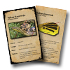 Species of Management Concern Field Identification Cards