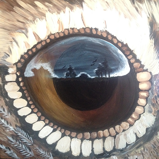 Eyes of Everglades