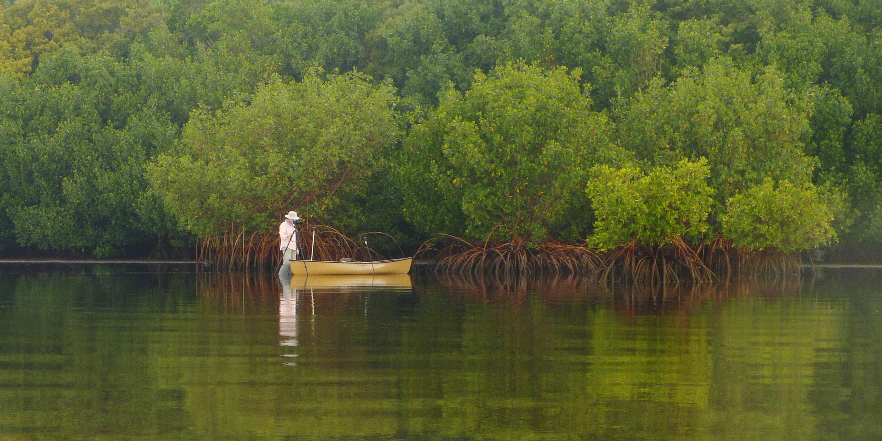 Everglades National Park Hosts Photographer Constance Mier ...