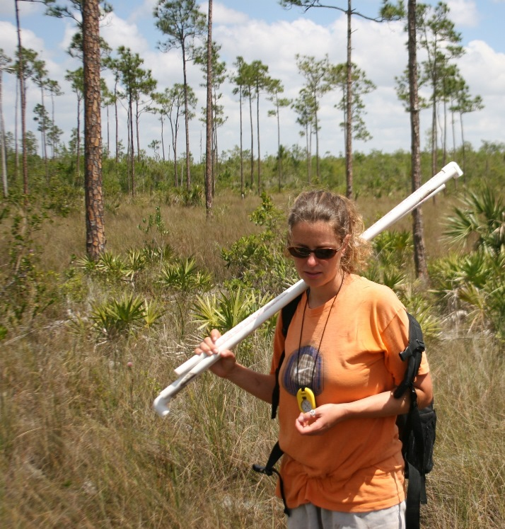 biologist in the pinelands