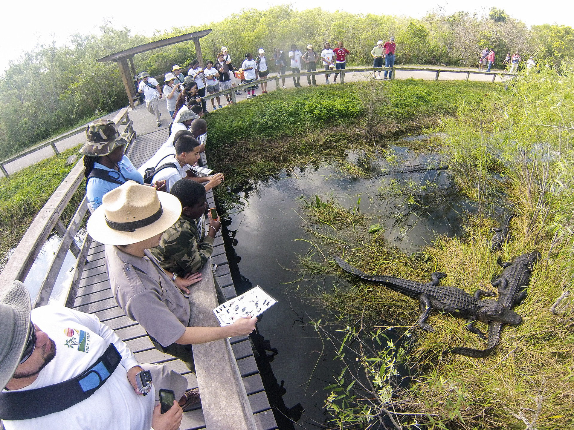 Everglades National Park is Open!