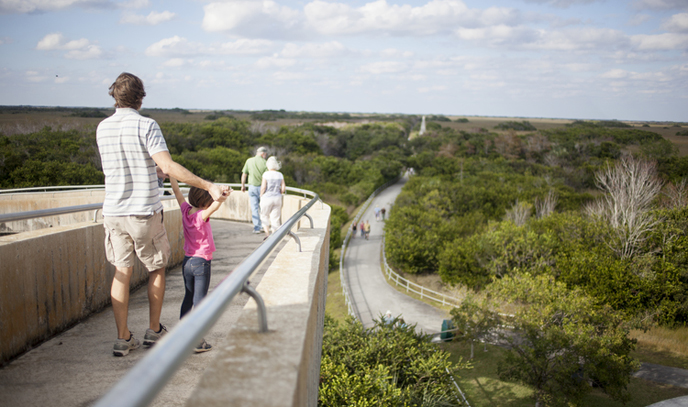 A father and child stand at the observation tower in Shark Valley.