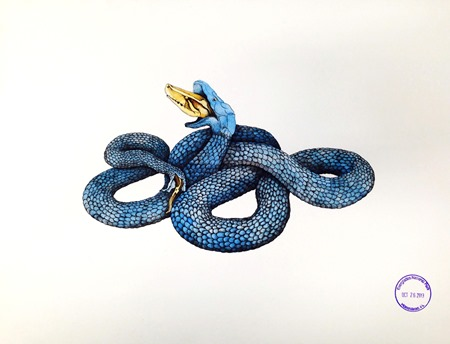 Blue snake watercolor by Brian McGovern Wilson 2013