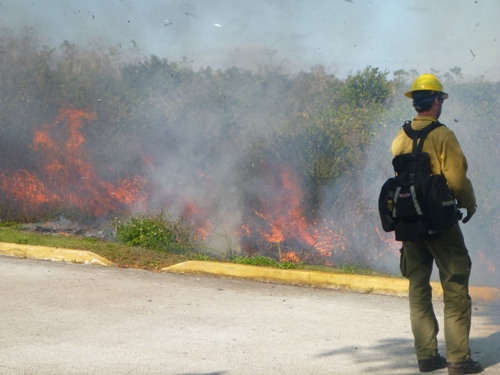 Everglades Firefighter monitors fire
