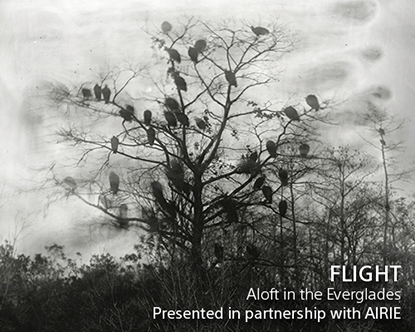 web AIRIE 'Flight' Exhibit (1)