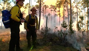 Prescribed fire specialists
