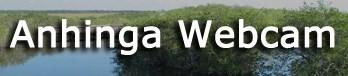 Anhinga Trail Webcam