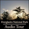 Everglades Audio Tour Cover Art