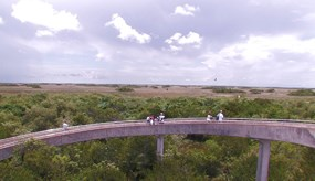 View from the Shark Valley observation tower