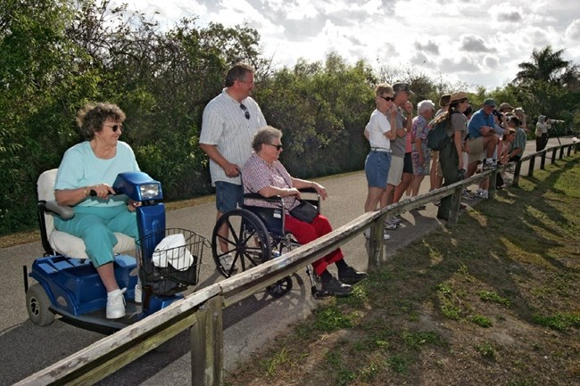 Accessible Ranger-Led Program on the Anhinga Trail