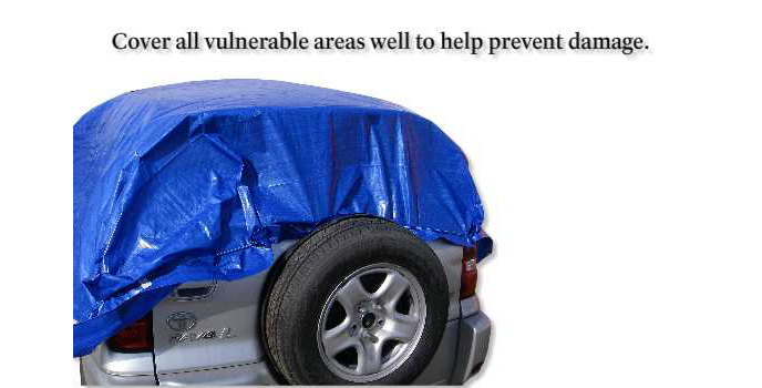 Cover all vulnerable areas well to help prevent damage.