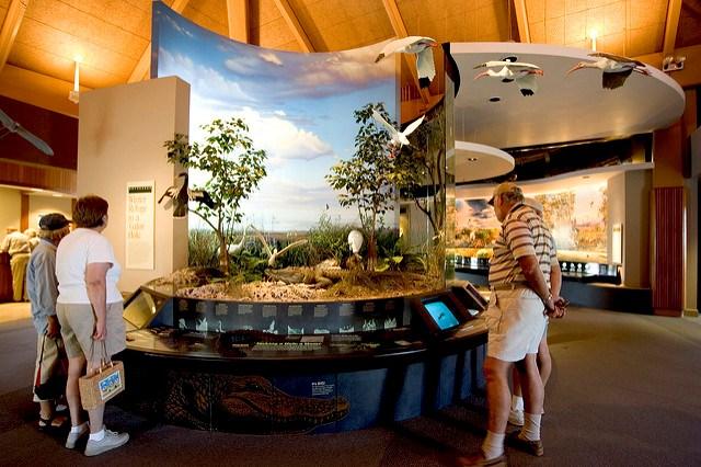 Uber Or Lyft >> Ernest F. Coe Visitor Center - Everglades National Park (U.S. National Park Service)