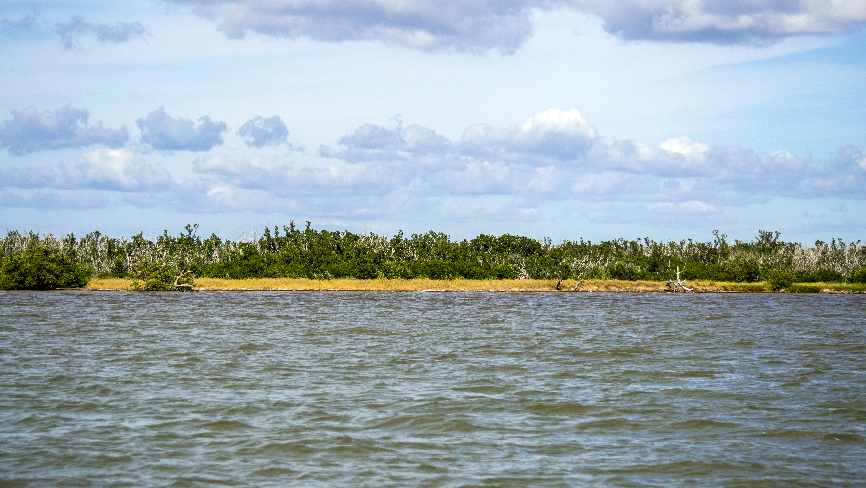 All Terrain Wheelchair >> Coastal Prairie Trail - Everglades National Park (U.S ...