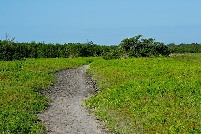 Coastal Prairie Hiking Trail