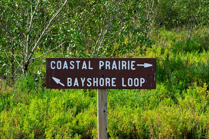 Coastal Prairie Hiking Trail Bayshore Loop