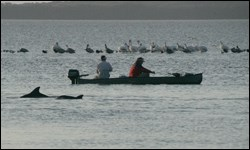 Boaters fishing in Florida Bay