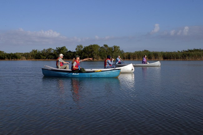 A park ranger, pointing, leading a canoe trip with visitors at Gulf Coast
