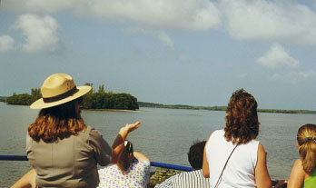 Ten Thousand Islands boat tour