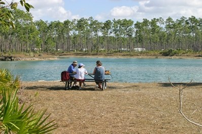 long pine key picnic