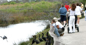 Visitors on the Anhinga Trail