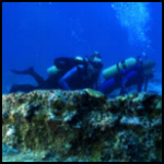Divers at Biscayne National Park
