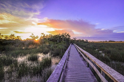 A boardwalk and a sawgrass prairie at sunset