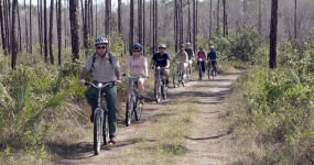 Bikers on Long Pine Key Trail