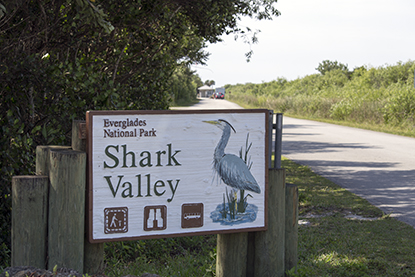 Shark Valley road sign