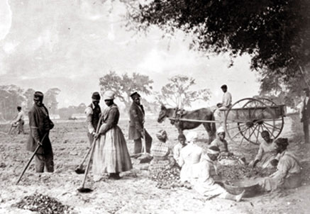 essay about women in the civil war Women were a great effect in the civil war many women would disquise themselves as men or spies to fight in the warother women would be nurses,aides,and doctors on.