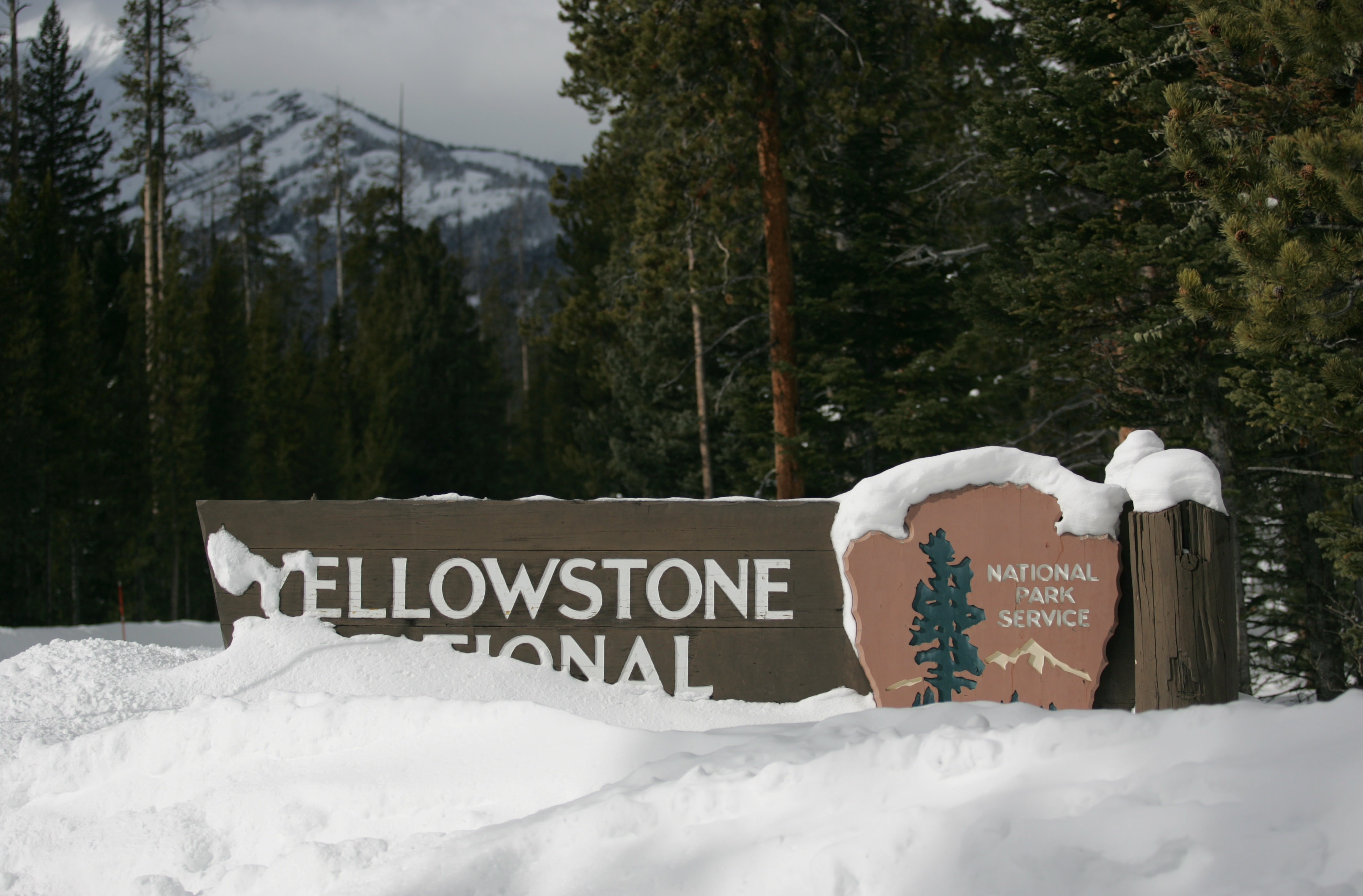 Yellowstone S Photo Collection