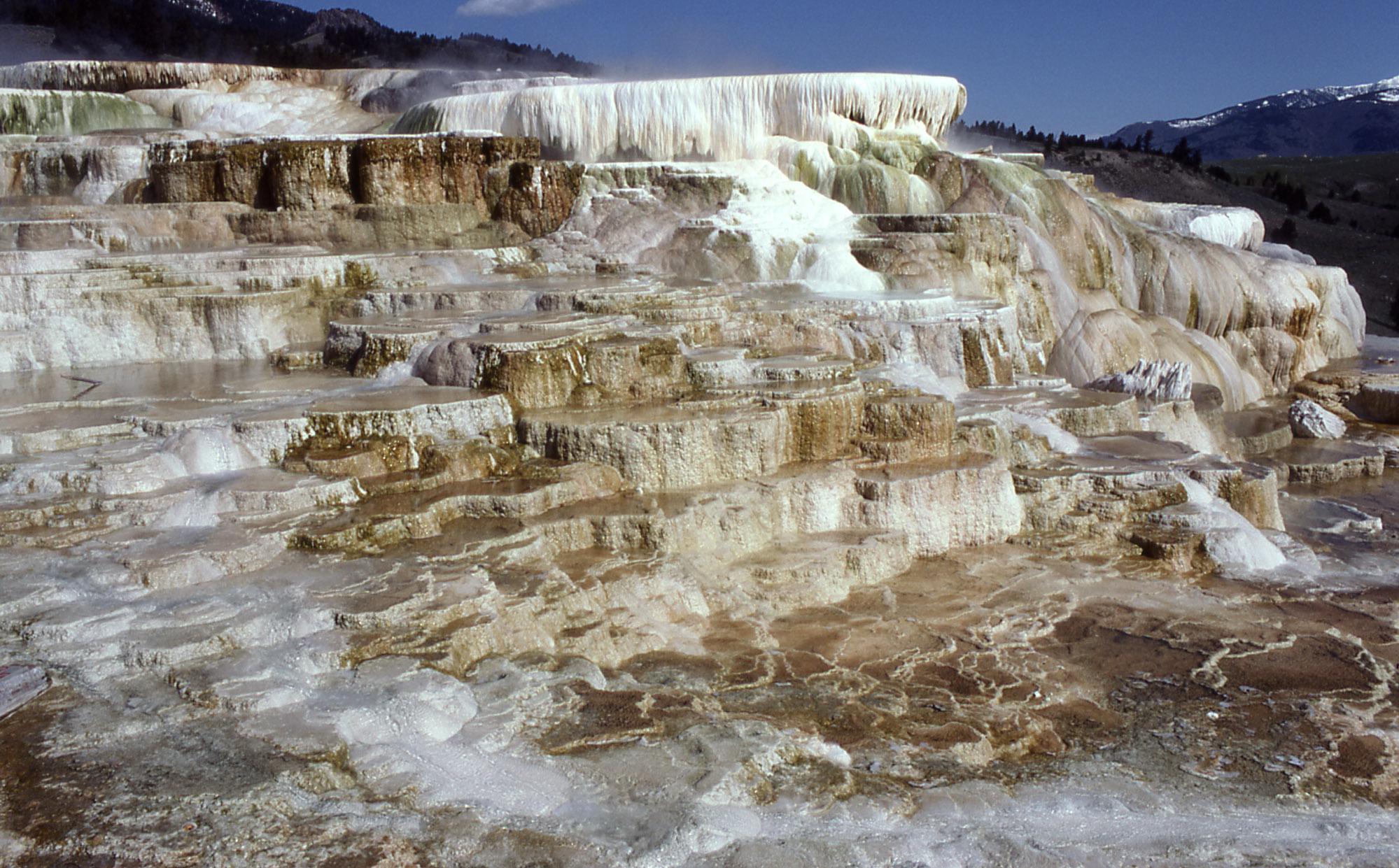 Yellowstone digital slide file for Minerva terrace yellowstone