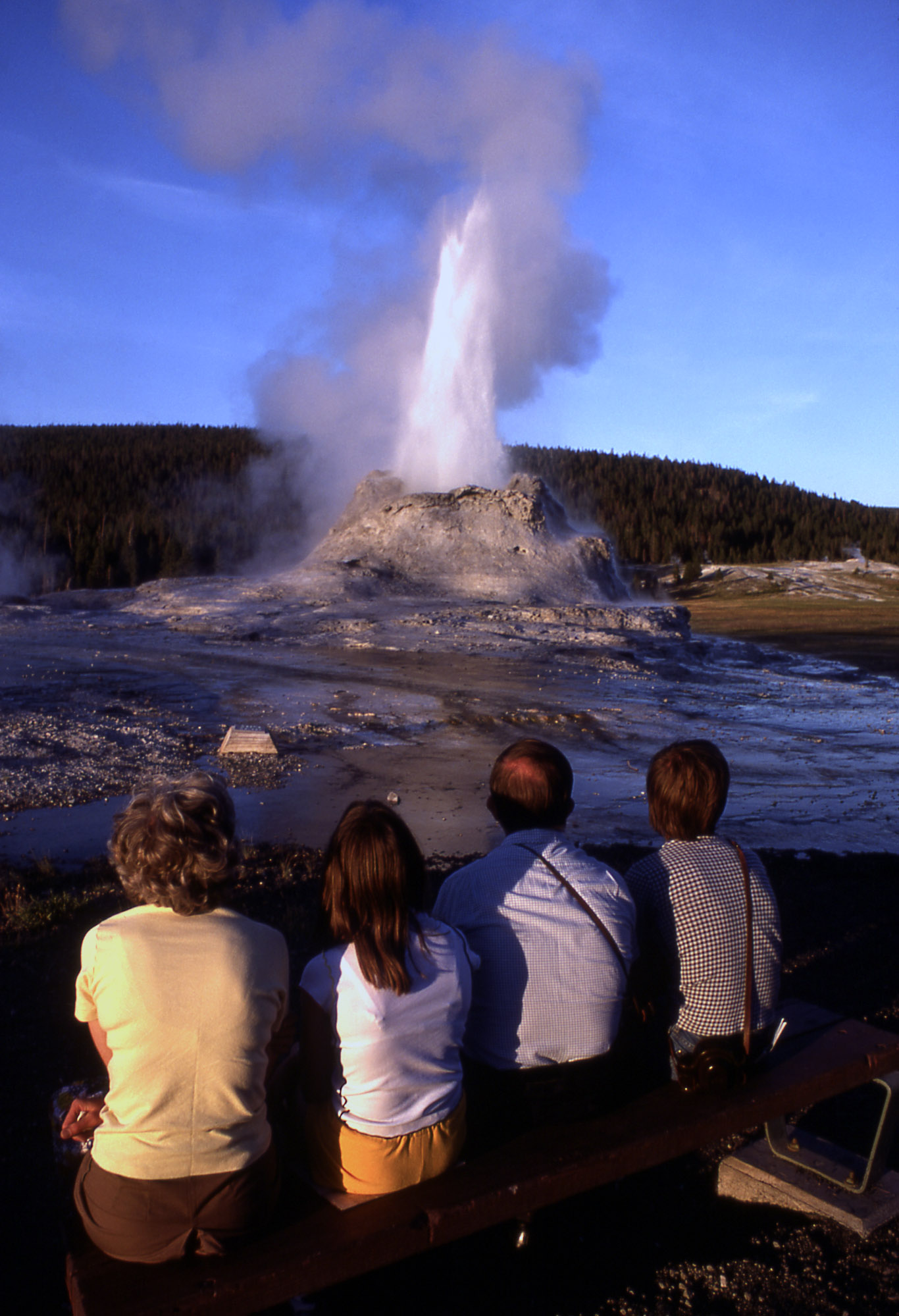 Watching the geyser the