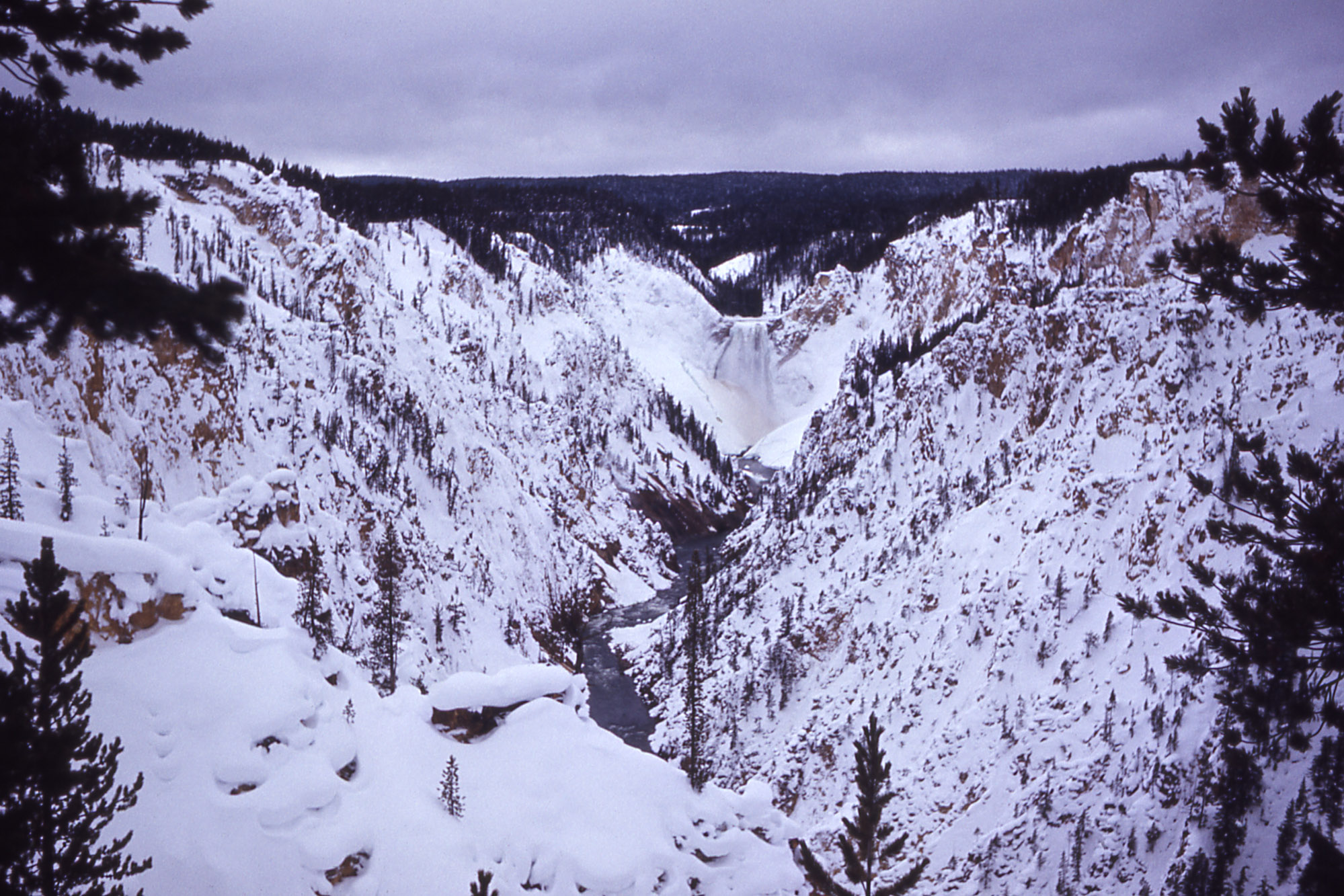 Yellowstone falls winter