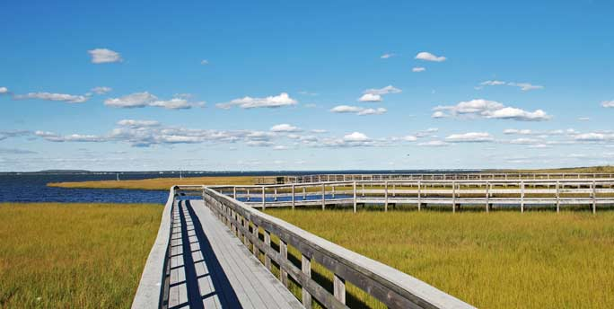 Watch-Hill-Nature-Trail-Boardwalk-Weaves-Through-Salt-Marsh